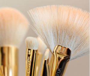 Sonia Kashuk Makeup Brush Review