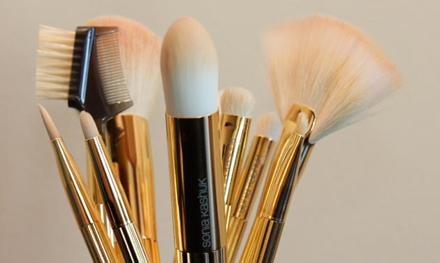 sonia kashuk brush collection Sonia Kashuk Makeup Brush Review   10 Brush Review Gold Limited Edition