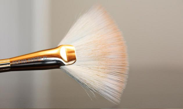 sonia kashuk duo fiber fanbrush Sonia Kashuk Makeup Brush Review   10 Brush Review Gold Limited Edition