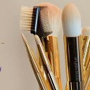 Sonia Kashuk Makeup Brush Review – 10 Brush Review Gold Limited Edition