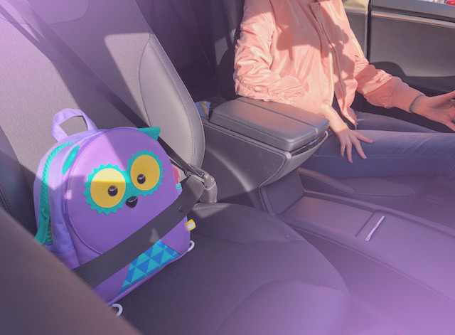 puku pals in the tesla