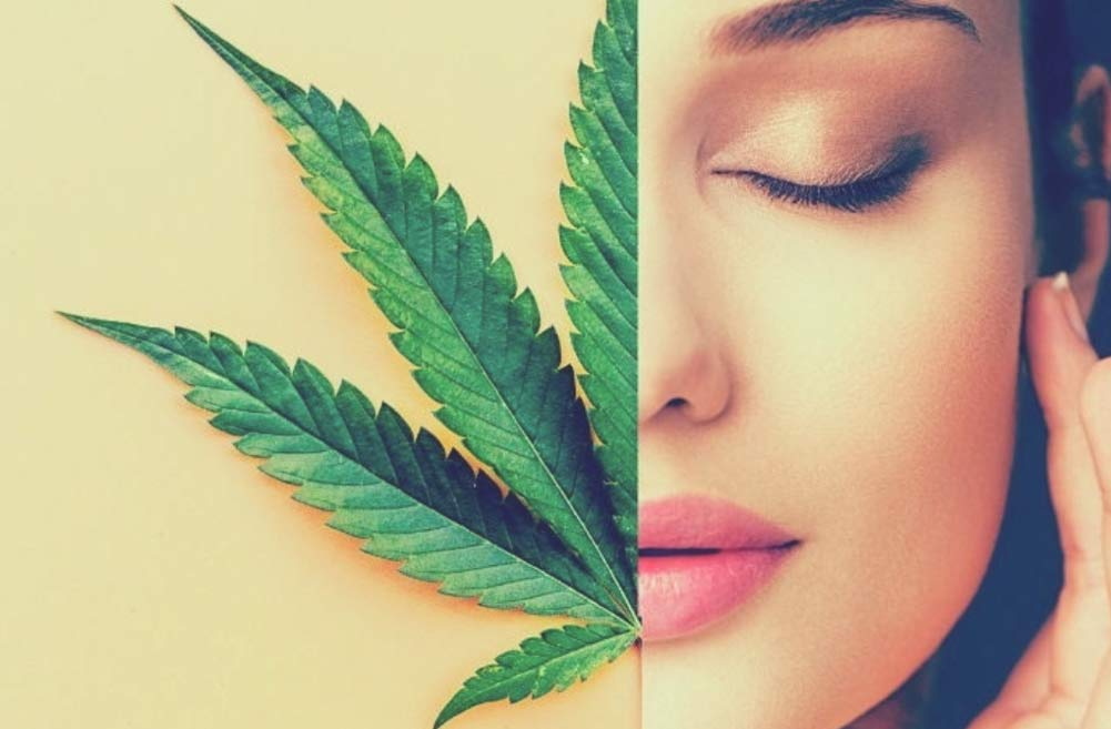 skin care benefits of cannabis oil