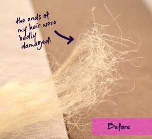 dry damaged hair - before photo