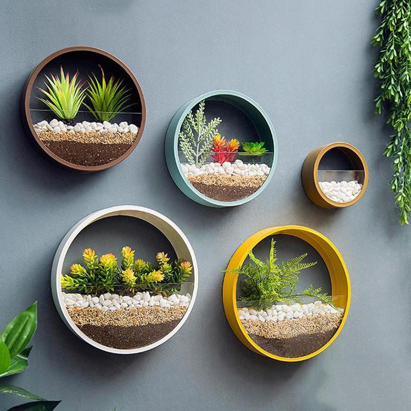 cacti wall hanger