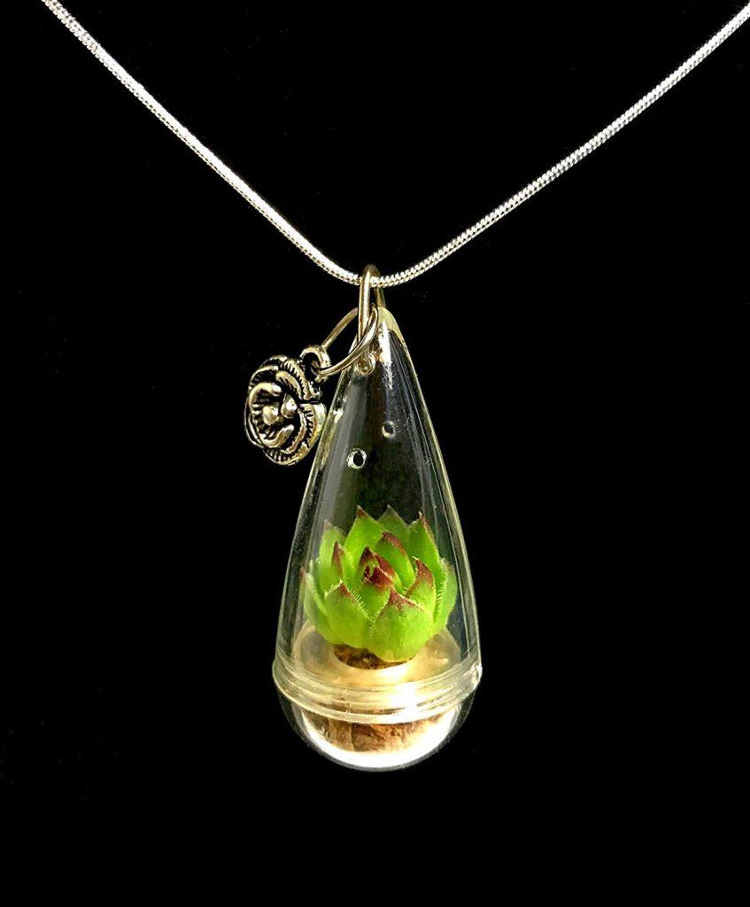 live succulent necklace