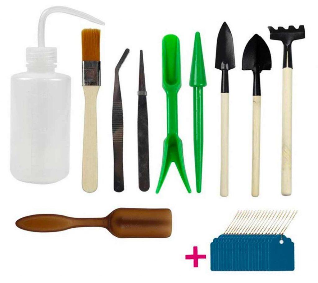 succulent gardening tools