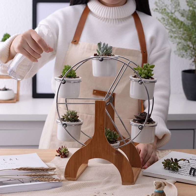 succulent lover gifts