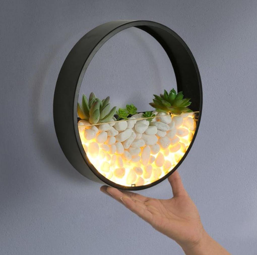 succulent planter light