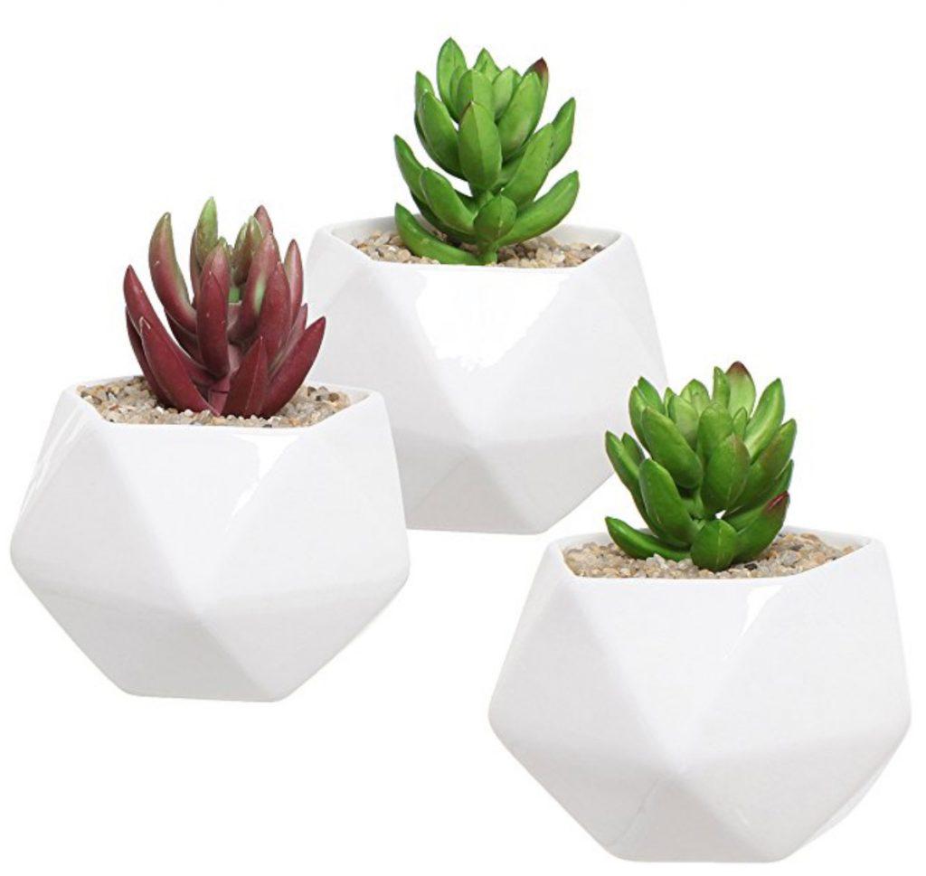 Geometric Succulent Pots Trendy pots for succulent lovers.