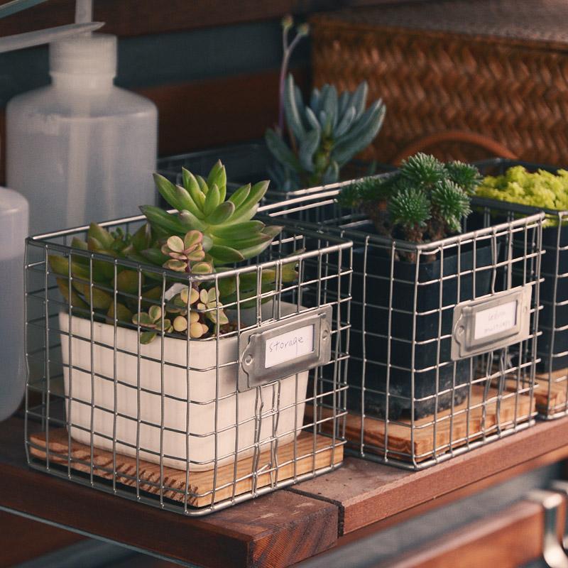 succulent wire bin storage
