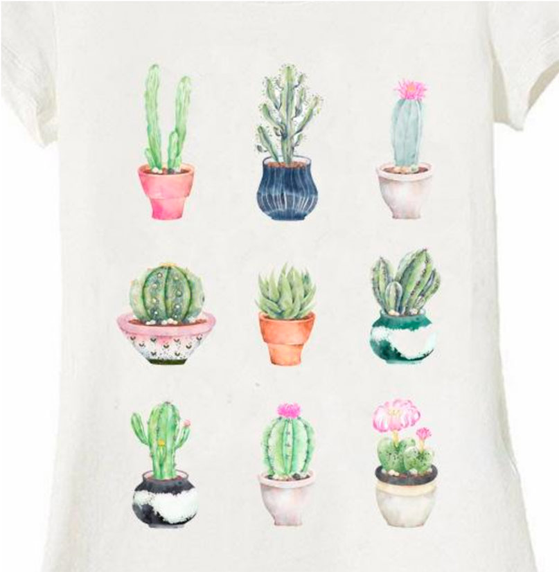 succulents t-shirt womens